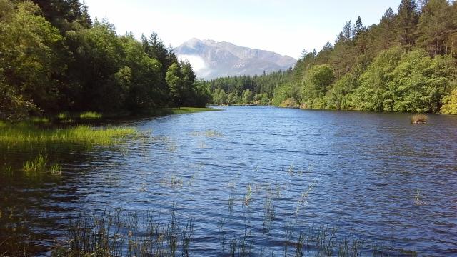 A loch within a forest near Glencoe.